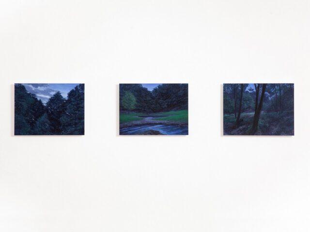 """© Muriel Hediger, allestimento Mostra """"L'oscurità è il silenzio della luce"""" (2021) con Tonatiuh Ambrosetti, Galleria Daniele Agostini"""