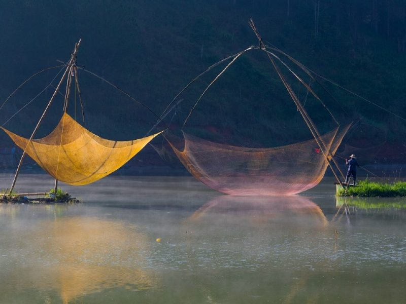 UP21 © Khanh Bui Phu, Magic net, 2021